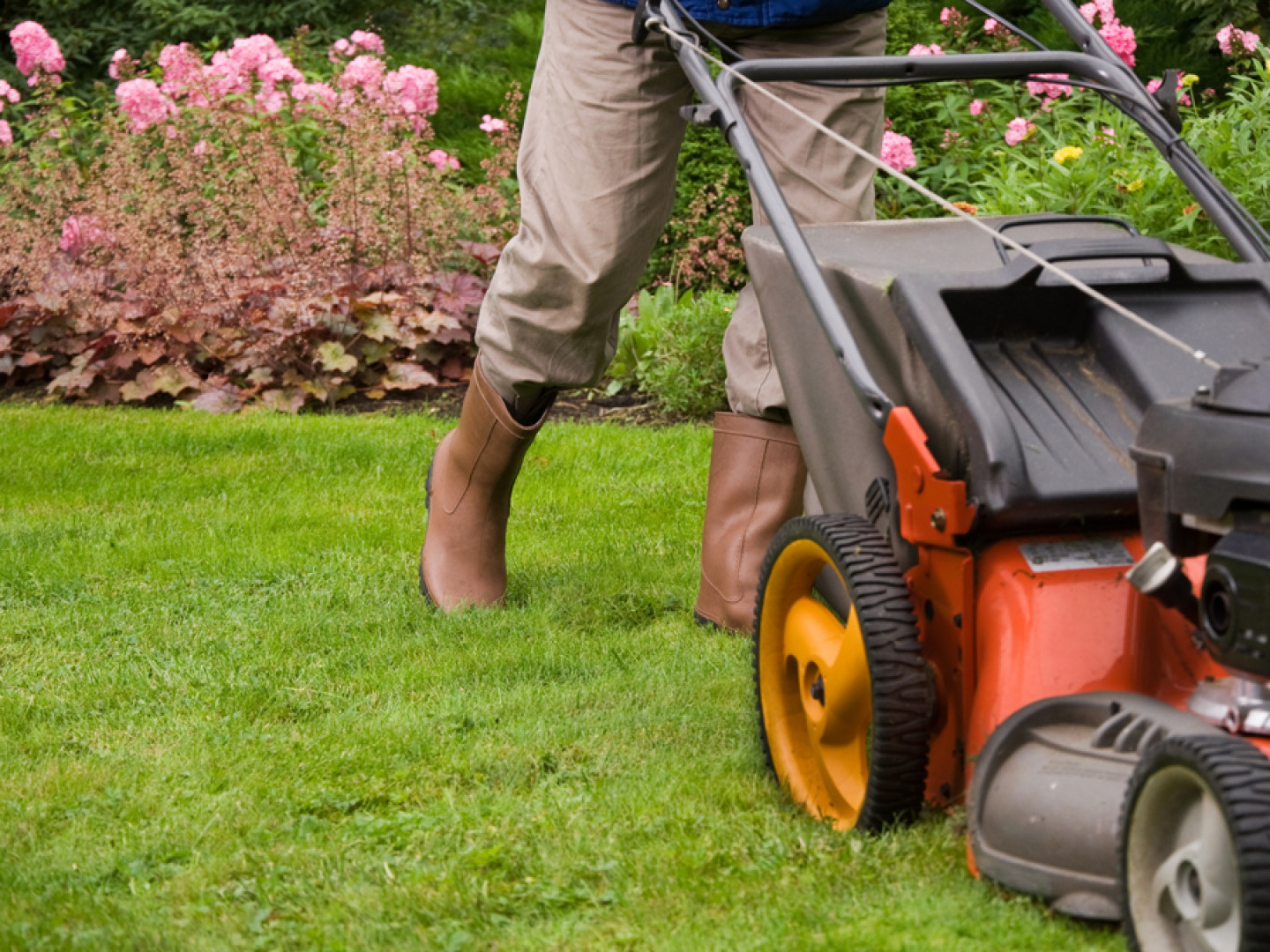 Don't Worry About Managing Your Lawn Yourself